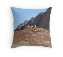 Haron dwelling Throw Pillow