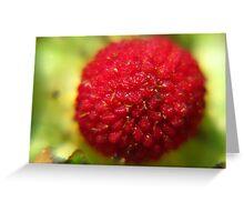 Wild Strawberry Greeting Card
