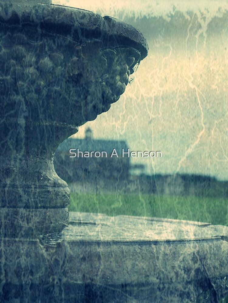 Fountain At Martha Clara by Sharon A. Henson