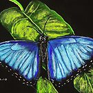 Blue Morpho Butterfly by Dawn B Davies-McIninch