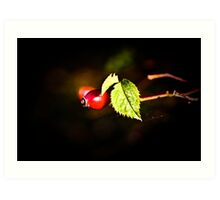 red berry Art Print