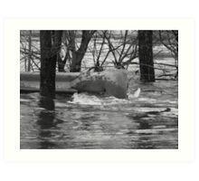 Pawtuxet River... Flood 2010 Art Print