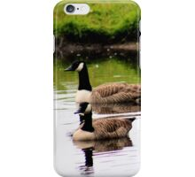 Gliding geese iPhone Case/Skin