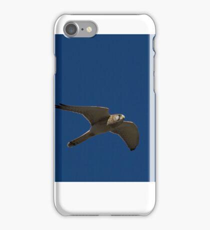 Flying Kestrel iPhone Case/Skin