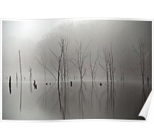 The Certainty of Light Poster