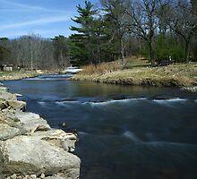 Fording Pine Creek by Richard Williams