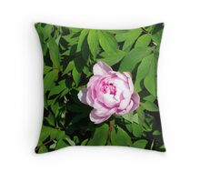 Floating on Green Throw Pillow