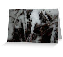 Winter Flurries Greeting Card