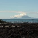 Galapagos Islands: Volcanic Areas by tpfmiller
