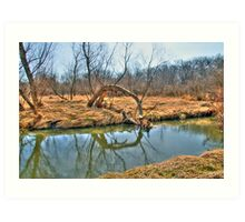 Country Creek Art Print