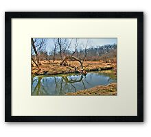 Country Creek Framed Print