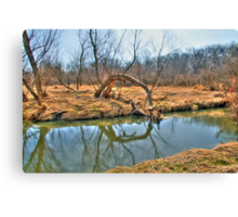 Country Creek Canvas Print
