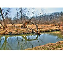 Country Creek Photographic Print