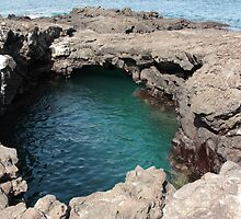 Galapagos Islands: Pool of Water in Lava Formations by tpfmiller