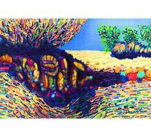 Colorful Shadows among the Rocks Photographic Print