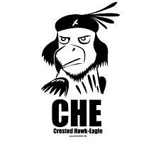 CHE- Crested Hawk Eagle Photographic Print