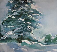 Pine Tree by Kay Hale