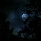 Fools moon by skreklow