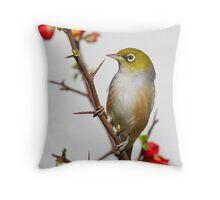 Winter Silvereye Throw Pillow
