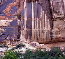 Desert Varnish  by lensmatter