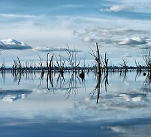 Lake mulwala by julie anne  grattan
