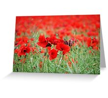 The Red Blanket Greeting Card