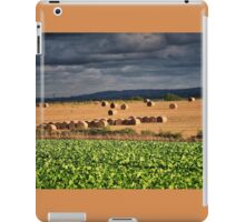 Roughage iPad Case/Skin