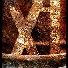 XI by Jon Harbottle
