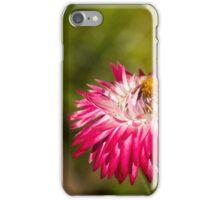 Wonders Never Cease iPhone Case/Skin