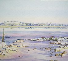 Salt on the Rocks - Dumbleyung Lake by scallyart