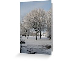Snow Tree - Münster Greeting Card