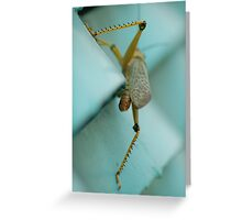 Locust Greeting Card