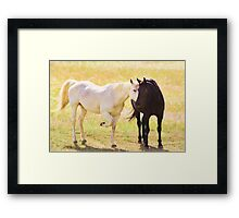 My One And Mine Framed Print