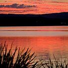 The Orange Lake by PPV247