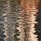 Roma Street Parklands Reflections 02 by Chris Cohen