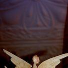 Heaven's Angel by Littlehalfwings