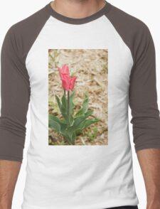 Red Tulips Men's Baseball ¾ T-Shirt