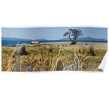 0002  On the road south - near Swansea, Tasmania Poster