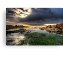 Willow Lake Wide Canvas Print
