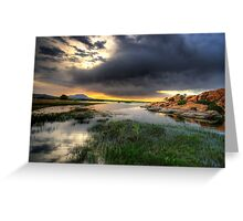 Willow Lake Wide Greeting Card
