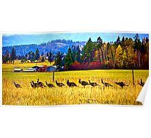 """""""The Wild Turkey Walk"""" Poster"""