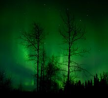 April 2nd/10 Auroras by peaceofthenorth