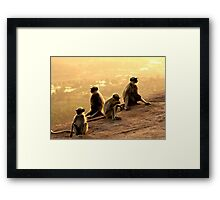 This Looks Like More Fun Than A Barrel Of Monkeys! Framed Print