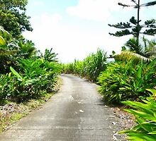 Little road on Run Island by Pantanet