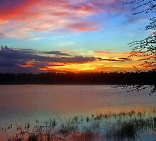 Sunset Orlando by Kenric A. Prescott