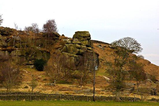 Brimham Rock #2 by Trevor Kersley