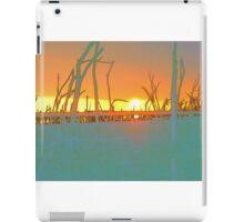 Dumbleyung Lake  iPad Case/Skin