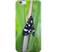Scarlet tiger moth on Weston Moor iPhone Case/Skin