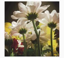 White flowers beautiful nature T-Shirt