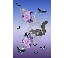 Playful Squirrel and the Butterflies Photographic Print